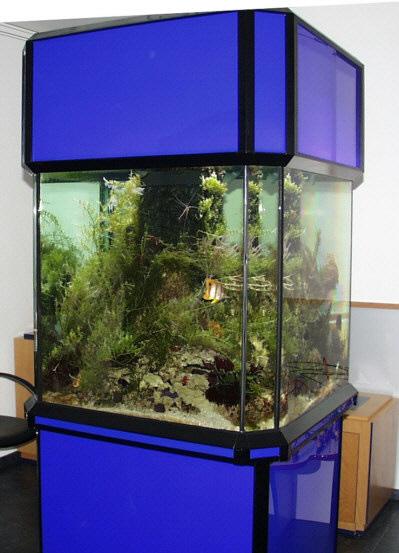 show aquarien von marine systems aluminium pvc holz. Black Bedroom Furniture Sets. Home Design Ideas